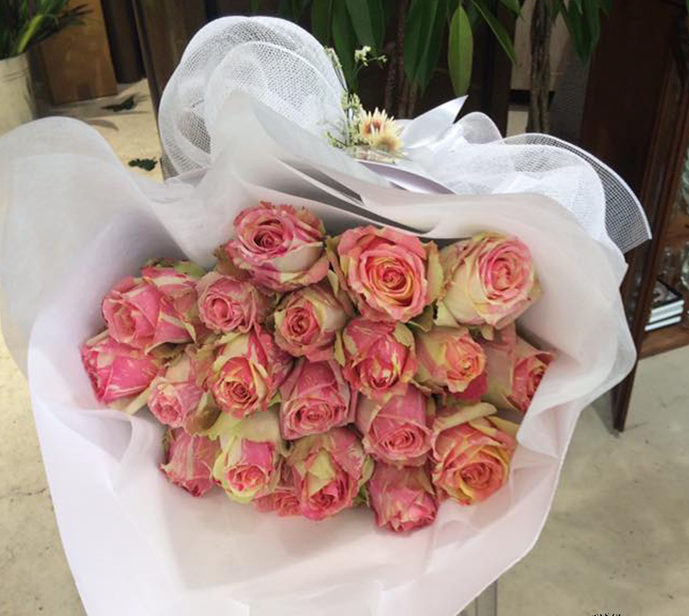 Roses Delivery Tauranga